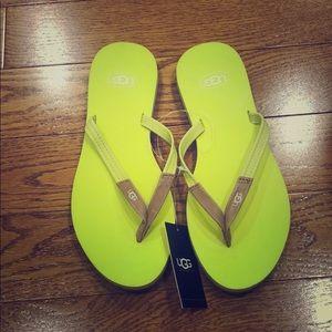 Green ugg flip flops
